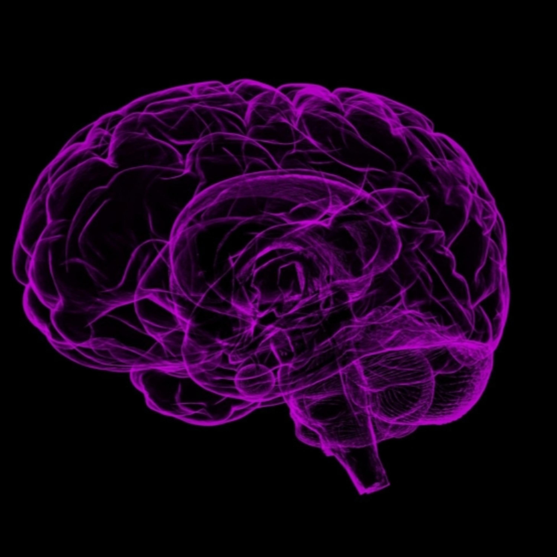 Alzheimer e alimentação: entenda mais sobre essa relação