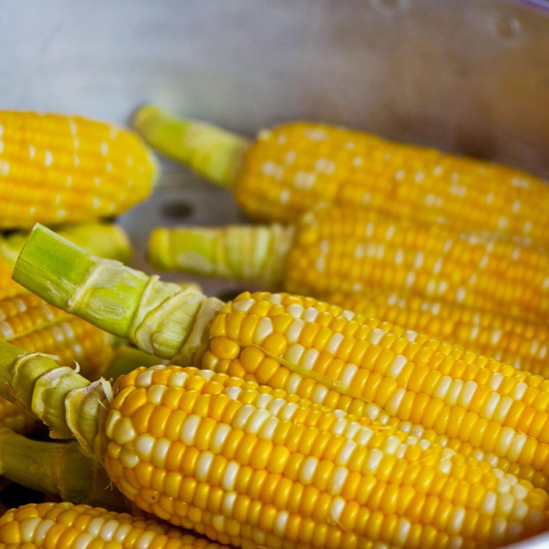 Alternativas saudáveis para você saborear cocada, canjica, milho e pipoca