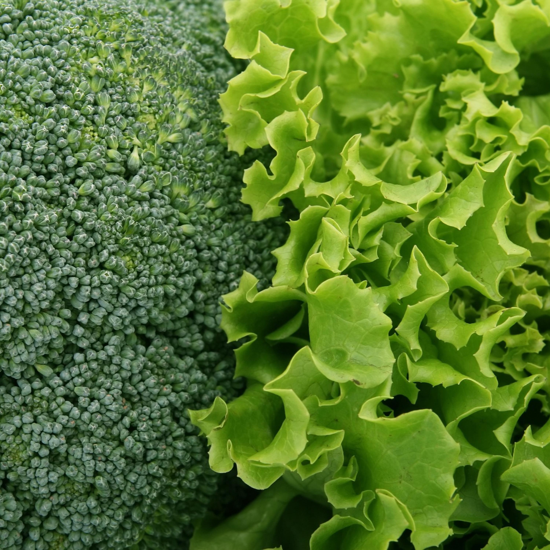 Do suco à salada: como aumentar a ingestão de hortaliças no seu dia a dia