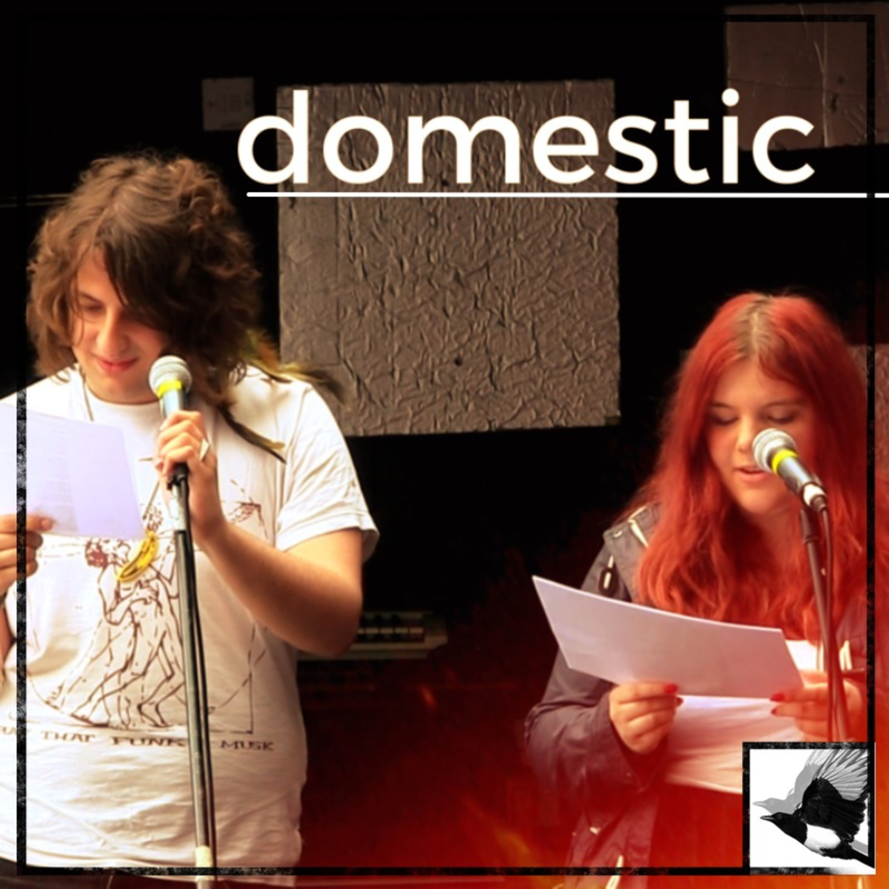 Domestic ~ Poetry | performance at the May 2015 Sunday Matinée