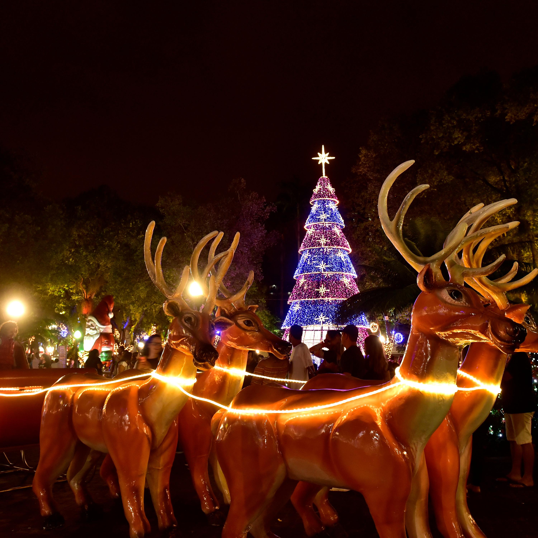 Roteiro festivo: já é Natal nas ruas e parques do ES!