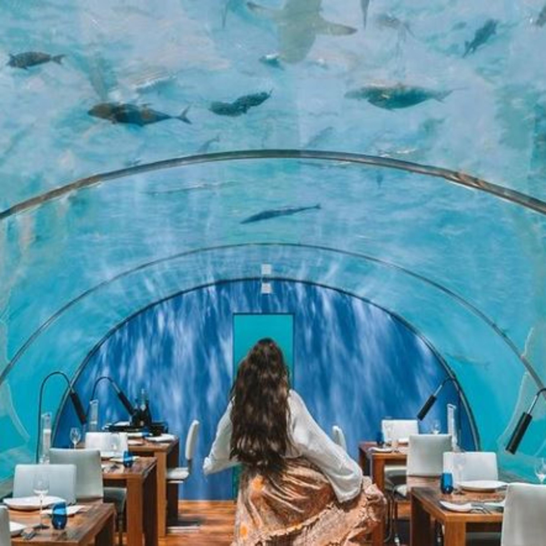 Cinco lugares únicos e exuberantes no mundo que valem a visita