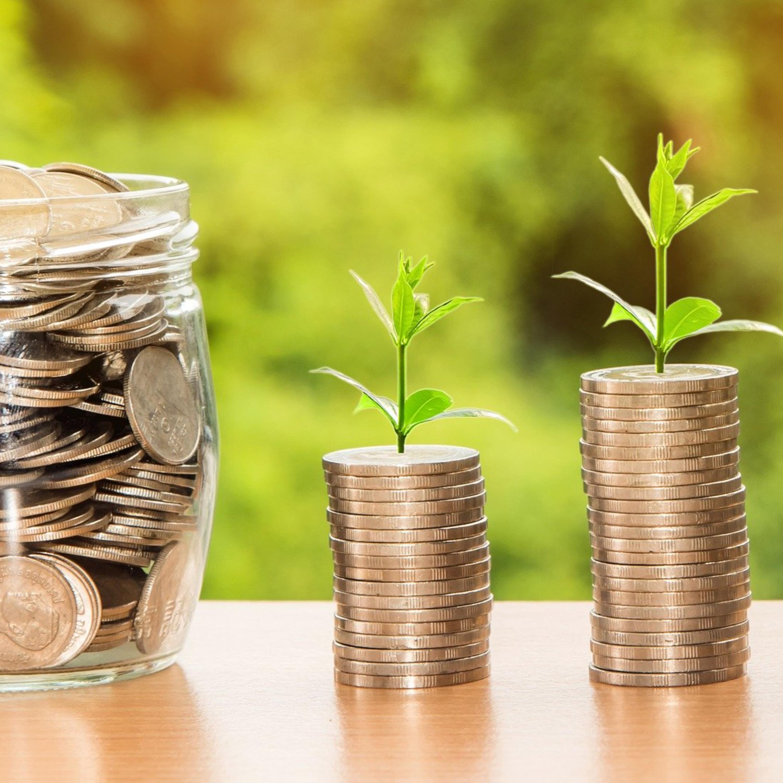 Entenda: alta da Selic traz oportunidades de investimentos em renda fixa