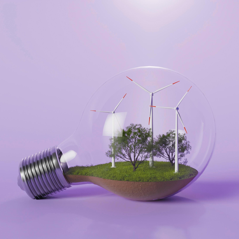 Ações sustentáveis são rentáveis? Saiba como funcionam estas empresas