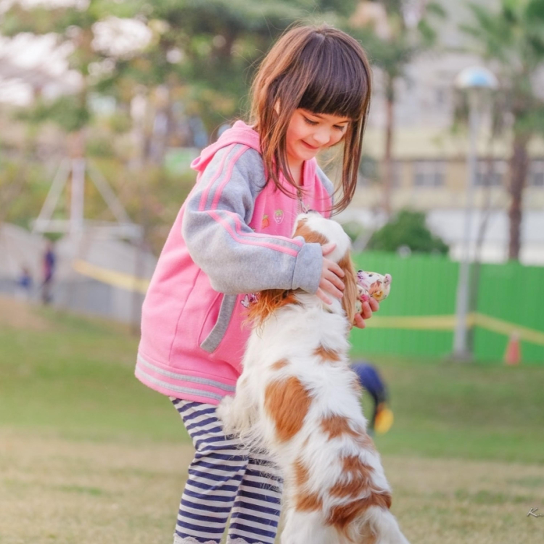 Convívio com animais pode ajudar no desenvolvimento das crianças