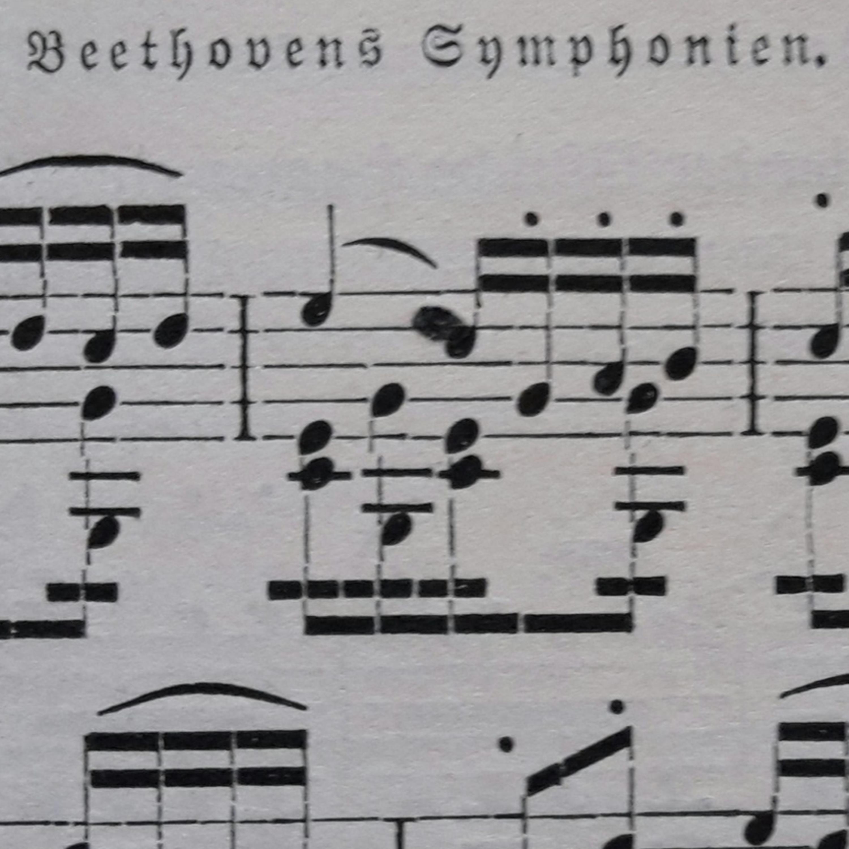 Nona Sinfonia de Beethoven: detalhes finais
