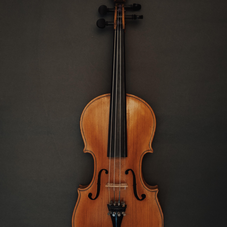 Viola: a versatilidade do instrumento da família das cordas
