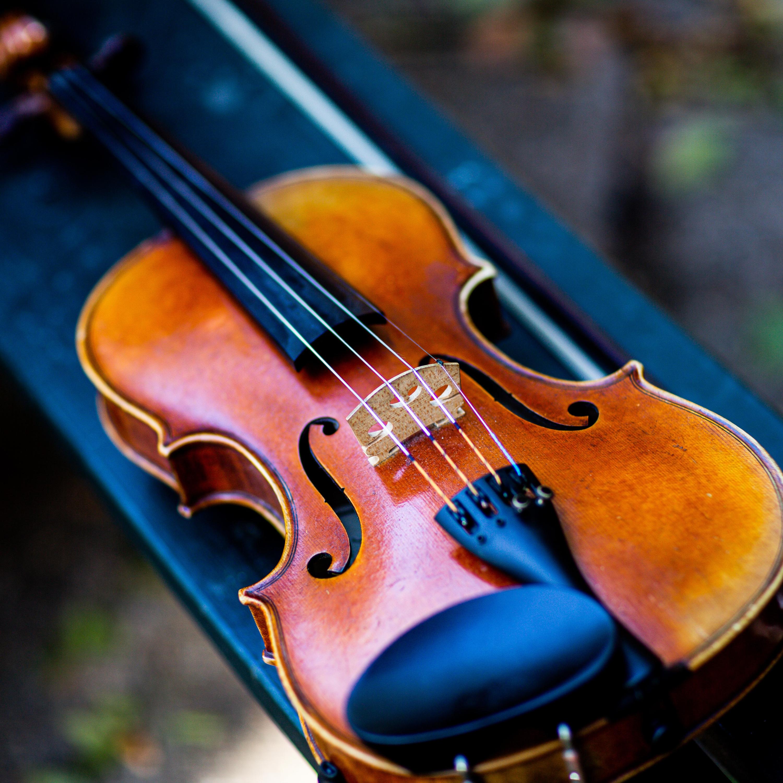 Ouça: 'Quarteto Op. 18/4' de Beethoven e 'Quarteto Americano' de Dvorak