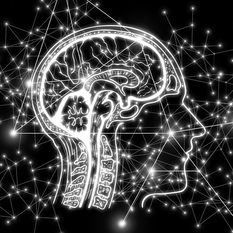 Como a inteligência artificial está mudando a forma como vivemos
