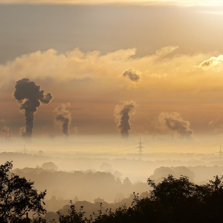 Crédito de carbono: saiba o que é e como funciona