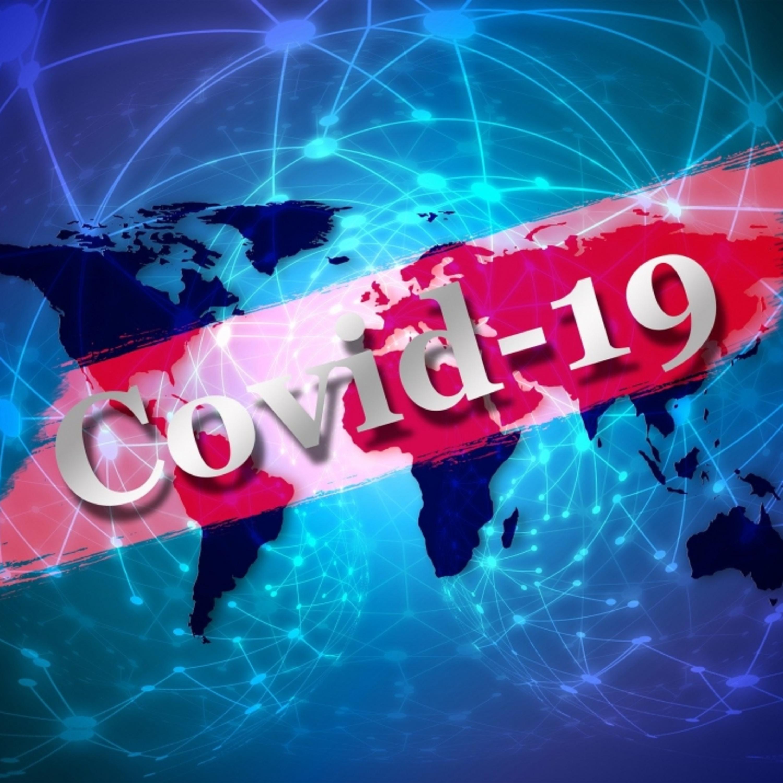 Pandemia de Coronavírus tem relação com a ação humana?
