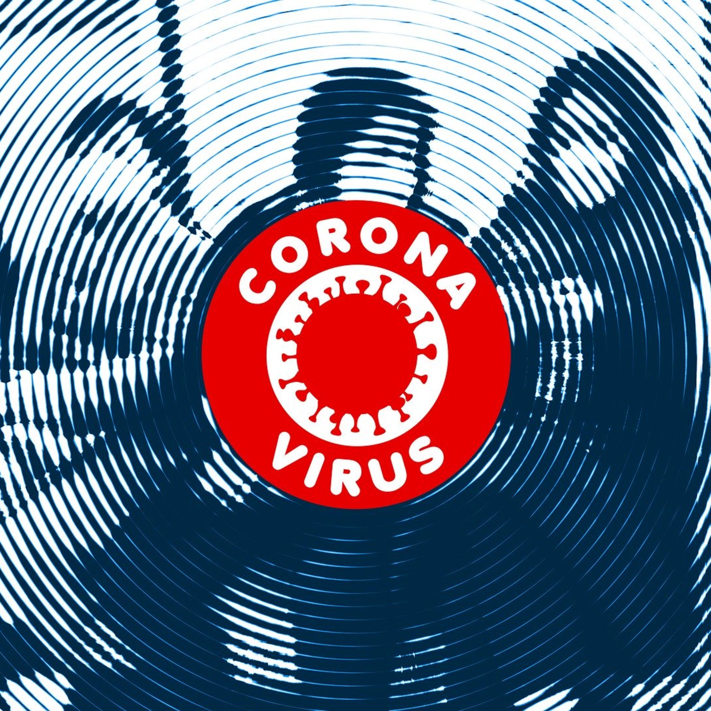 Coronavírus pode ser ameaça a conservação de primatas