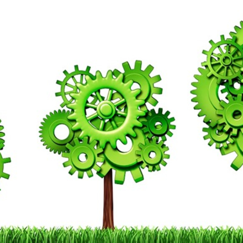 Meio ambiente: não podemos negligenciar a relação com o planeta