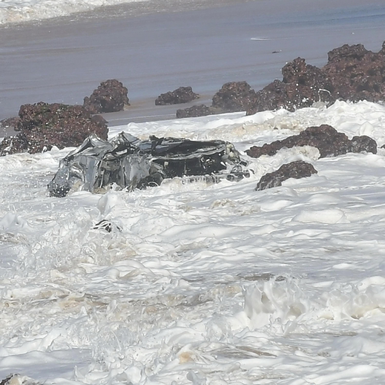 Lixo pode ter contribuído para a morte de baleias no litoral capixaba