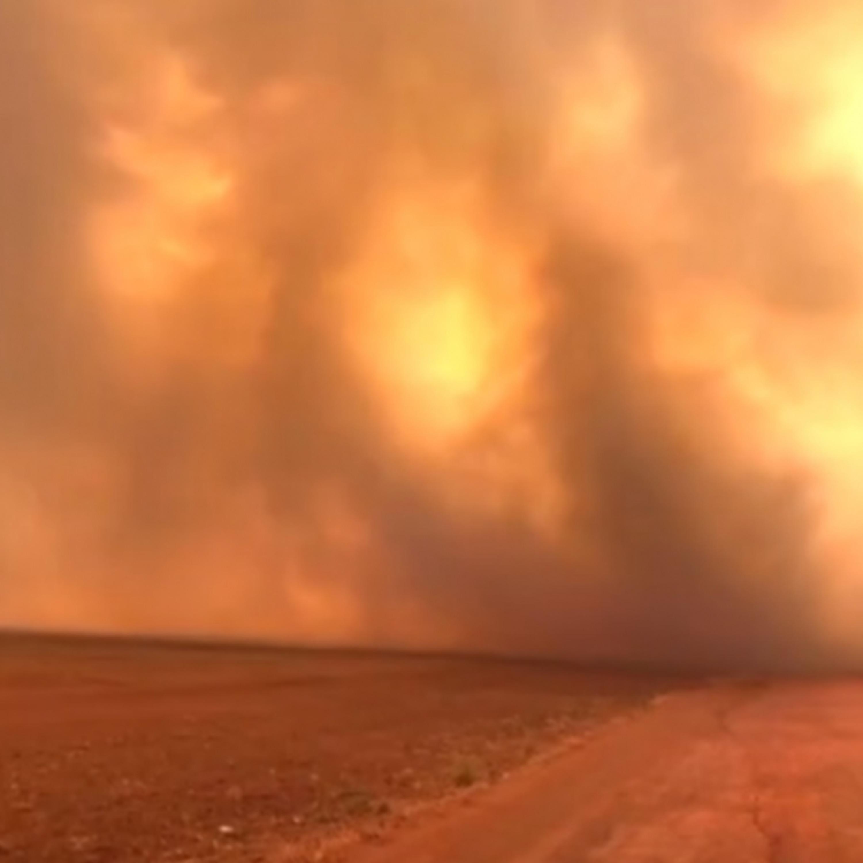 Planeta em chamas: efeitos das queimadas se espalham pelo mundo