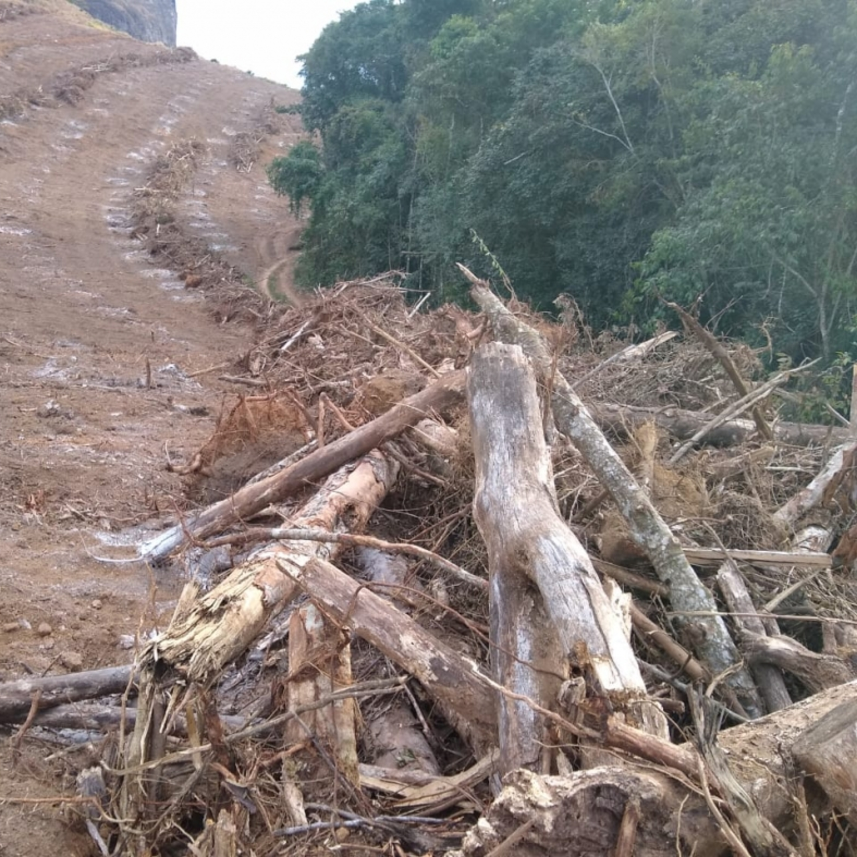 Entenda os reflexos do desmatamento na região Serrana do ES