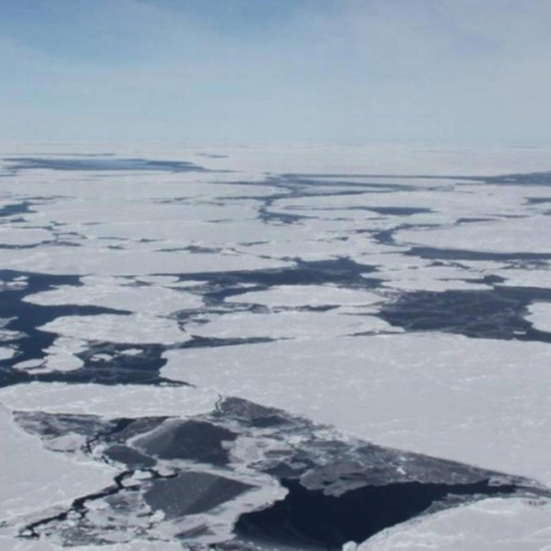2021 será ano importante na luta contra o aquecimento global; entenda