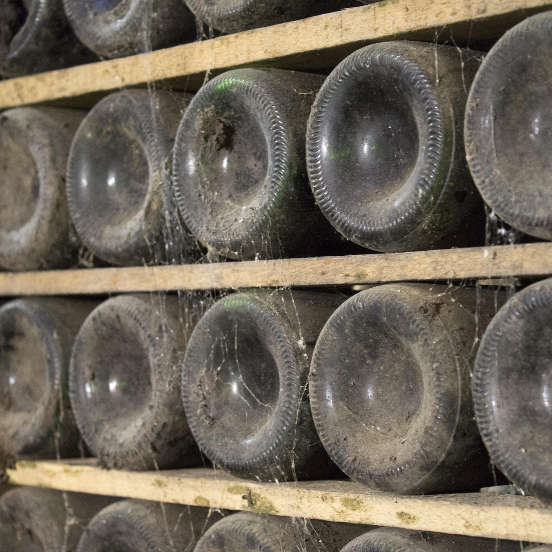 Volta ao Mundo do Vinho: Confira detalhes da região de Rioja