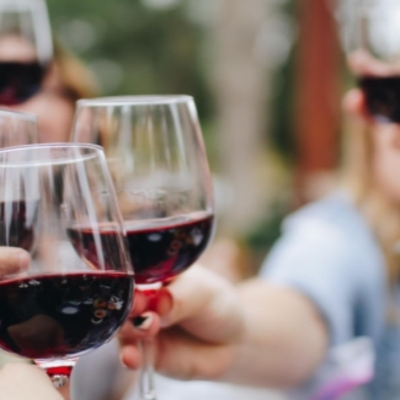 Tire suas principais dúvidas sobre o mundo do vinho