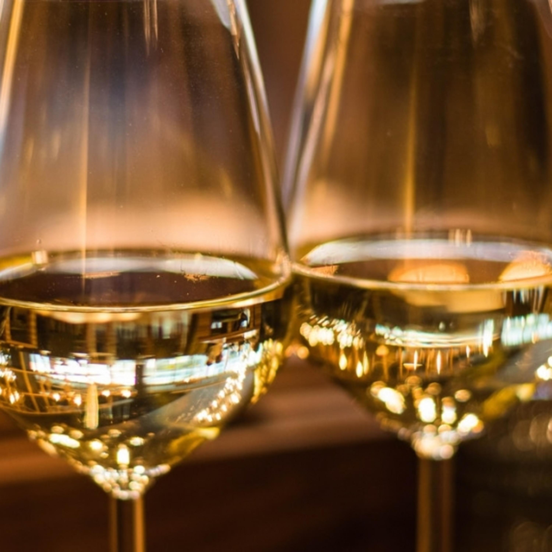 Tira-dúvidas sobre vinhos: confira dicas de harmonização