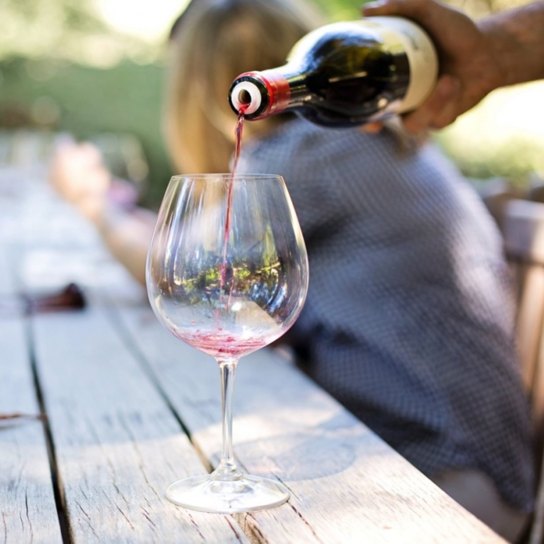 Rainha das uvas tintas: saiba tudo sobre a Cabernet Sauvignon
