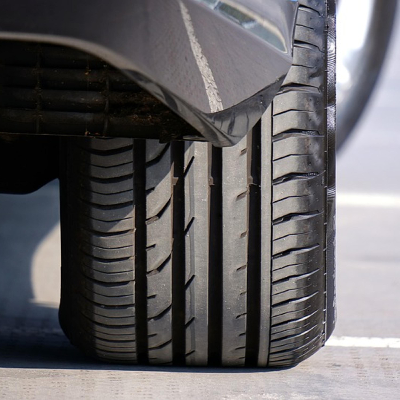 Até xixi de cachorro pode comprometer qualidade das rodas do carro?