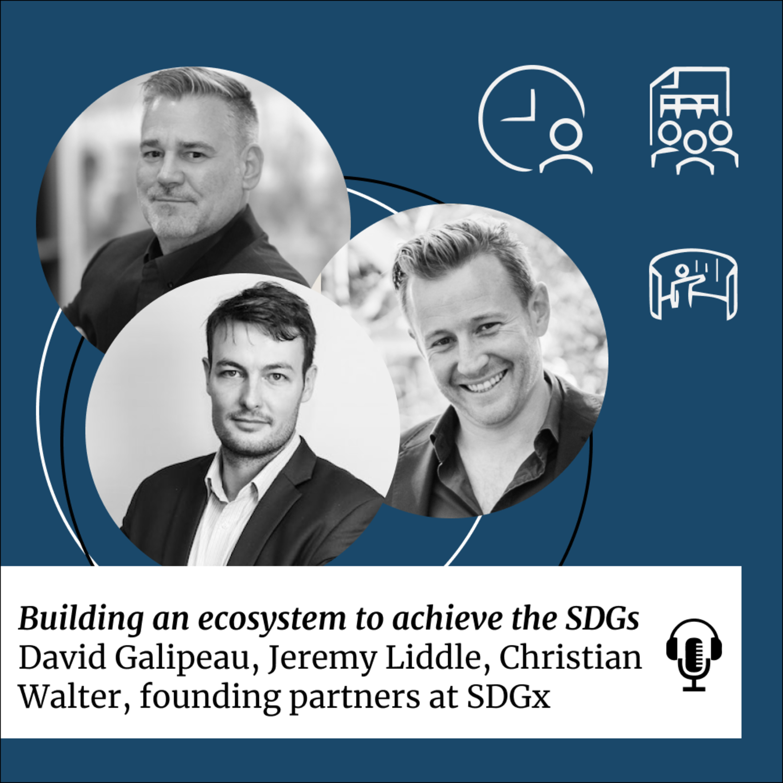 SDG 17: Building an ecosystem to achieve the SDGs