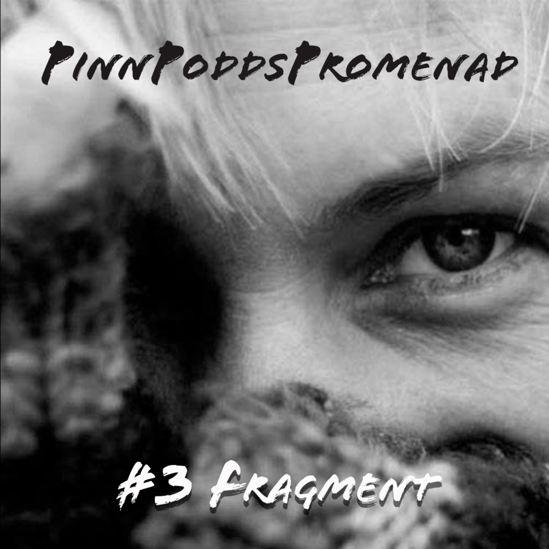 PinnPoddsPromenad #3 - Fragment
