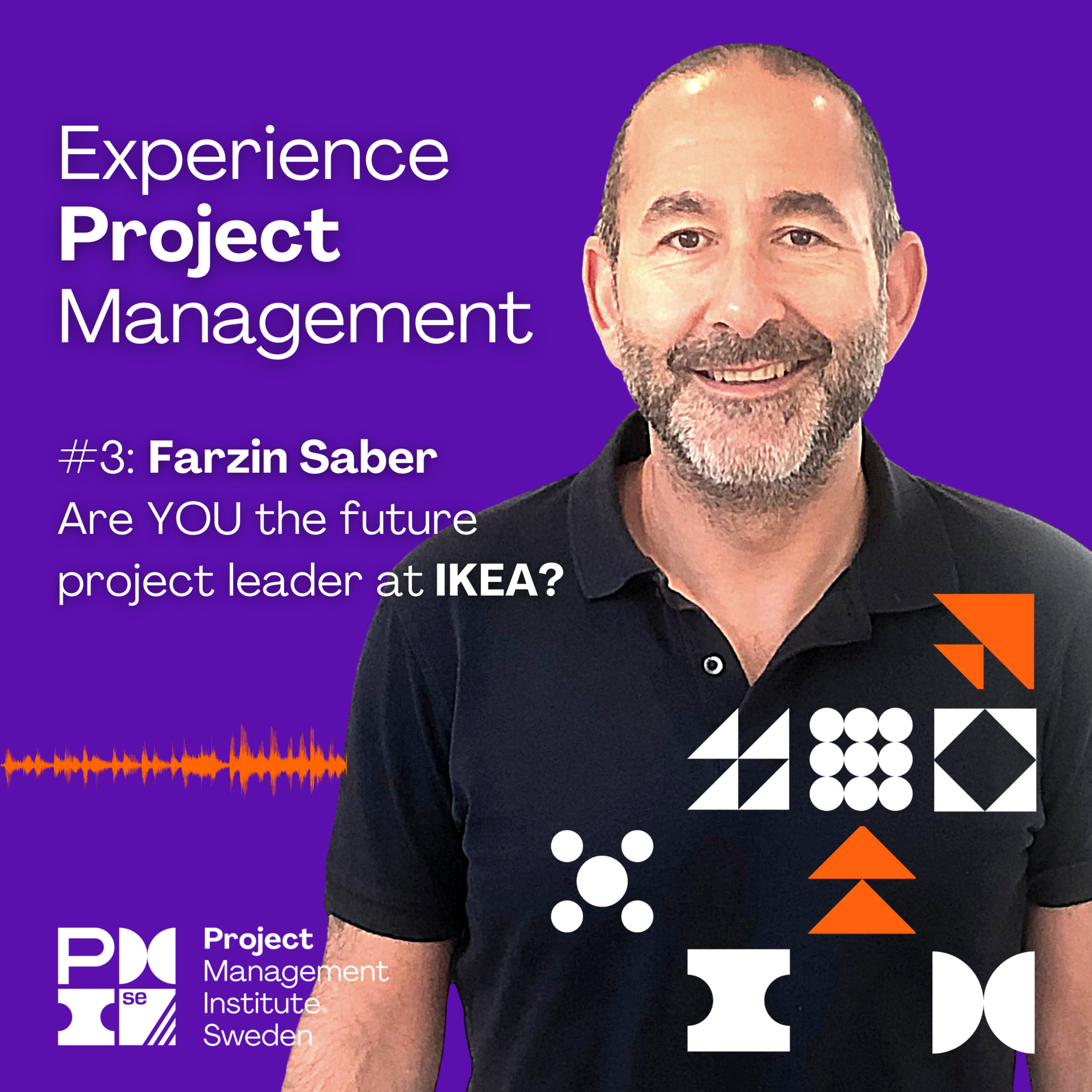 3. Farzin Saber - Are YOU the future project leader at IKEA?