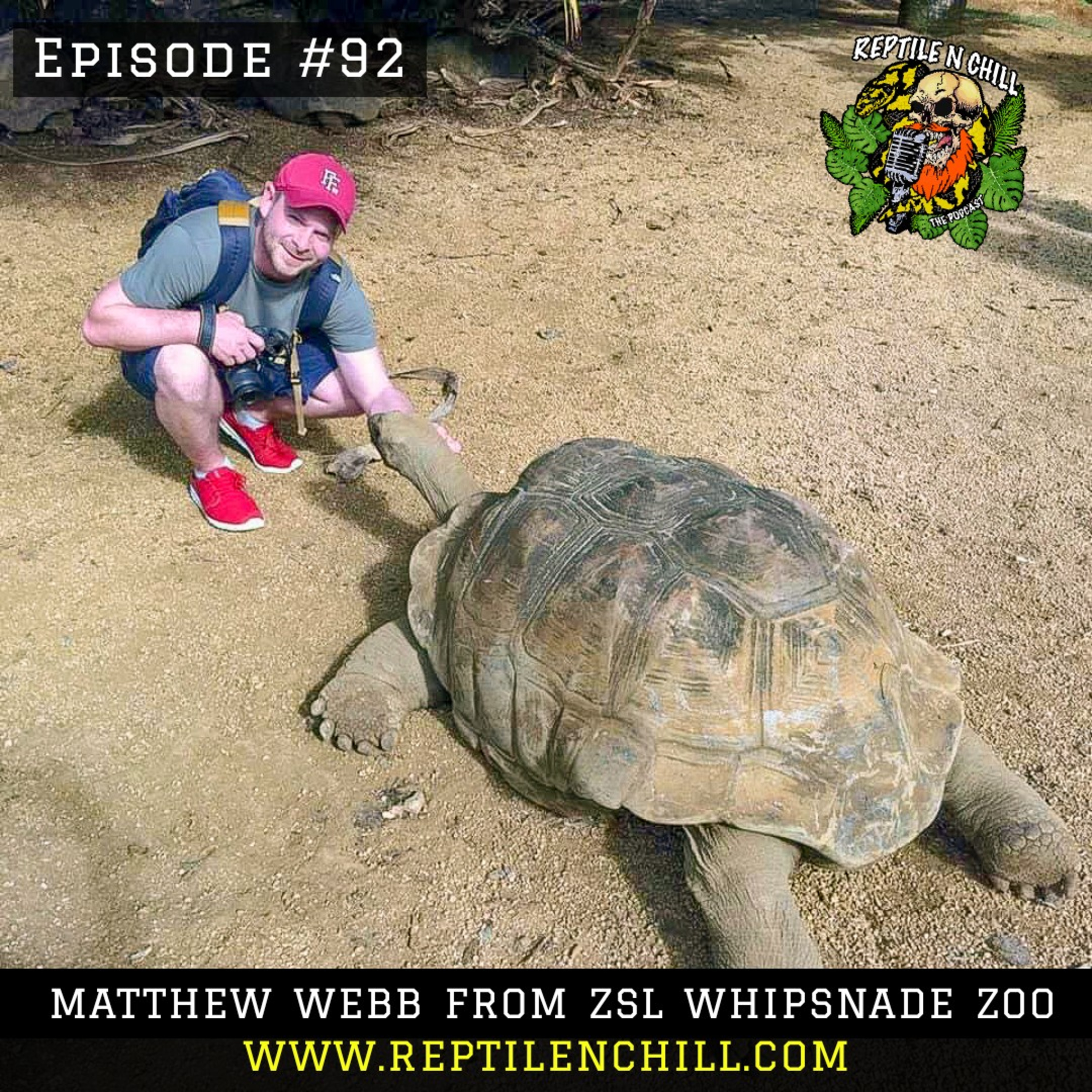 Matthew Webb from ZSL Whipsnade Zoo, Covid-19 zoo related issues - 92 Reptile n Chill