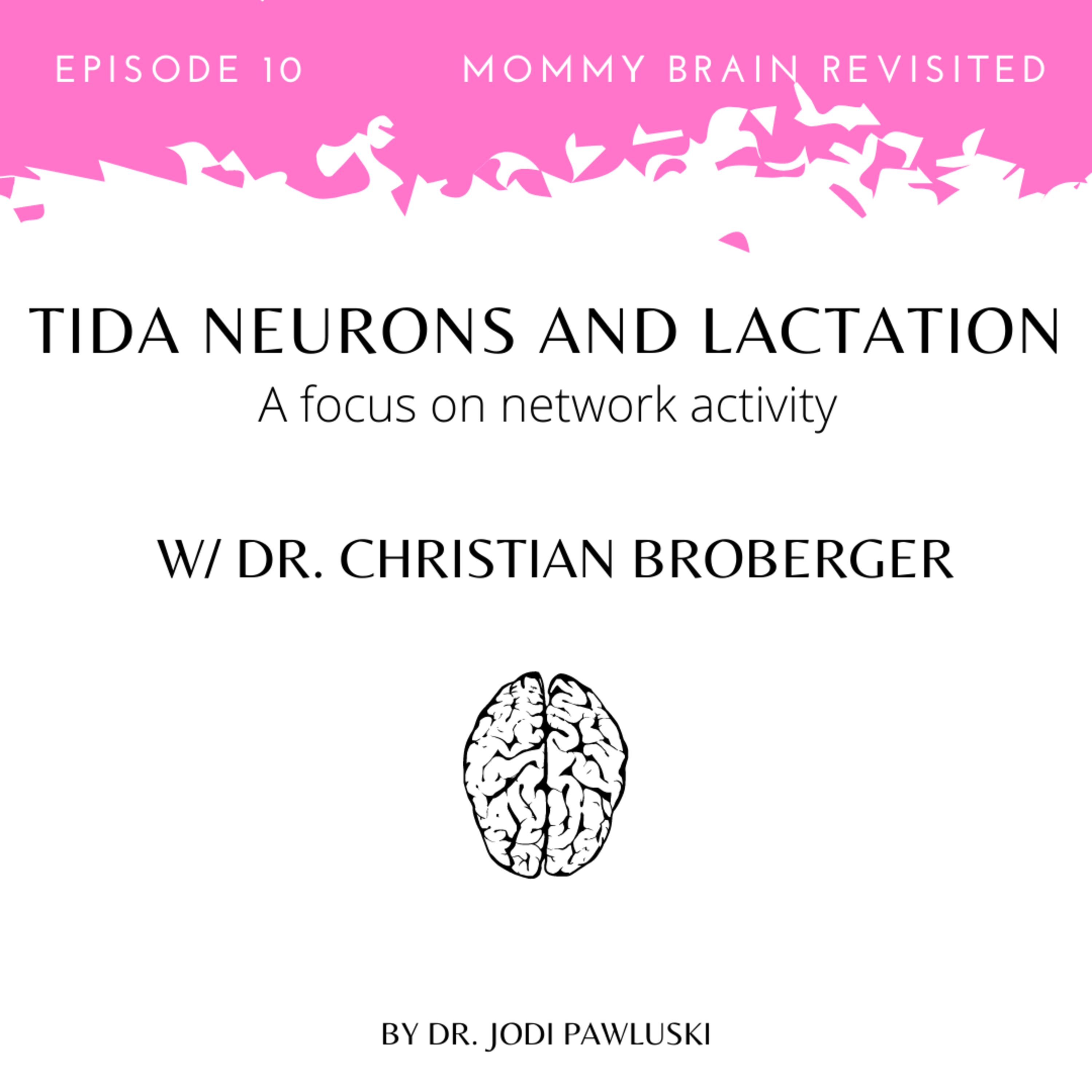 10. TIDA Neurons and Lactation: A focus on network activity