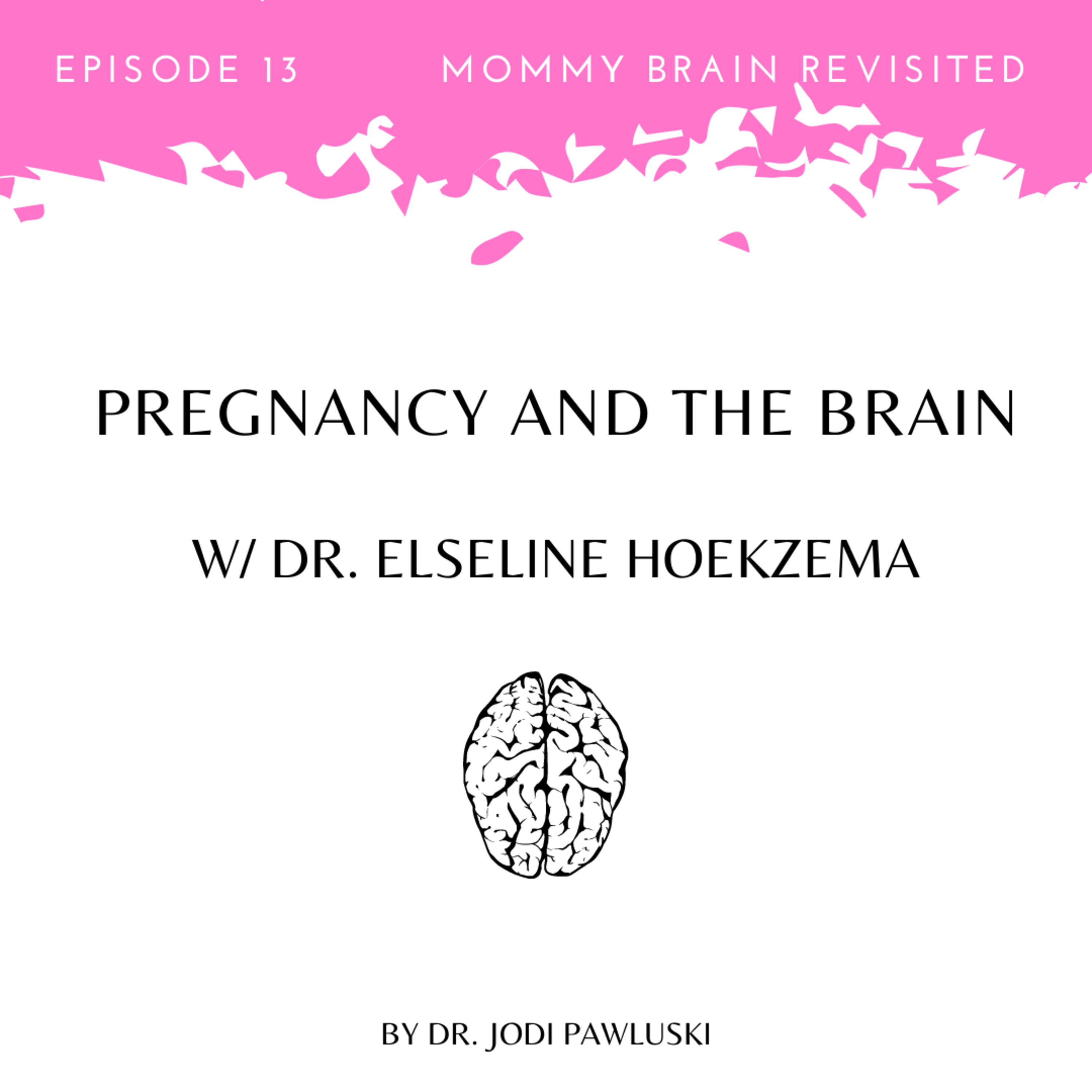 13. Pregnancy and the Brain