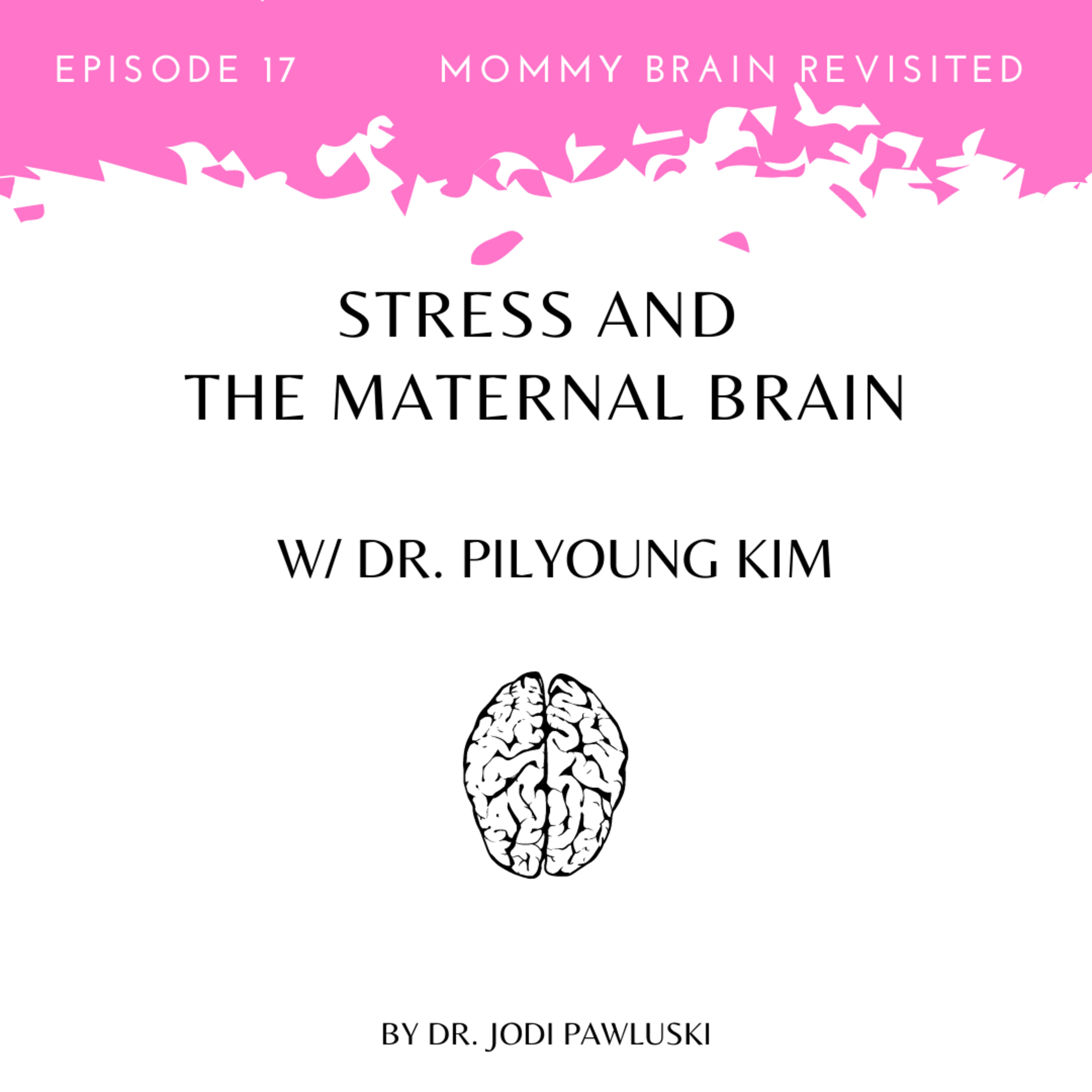 Stress and the Maternal Brain