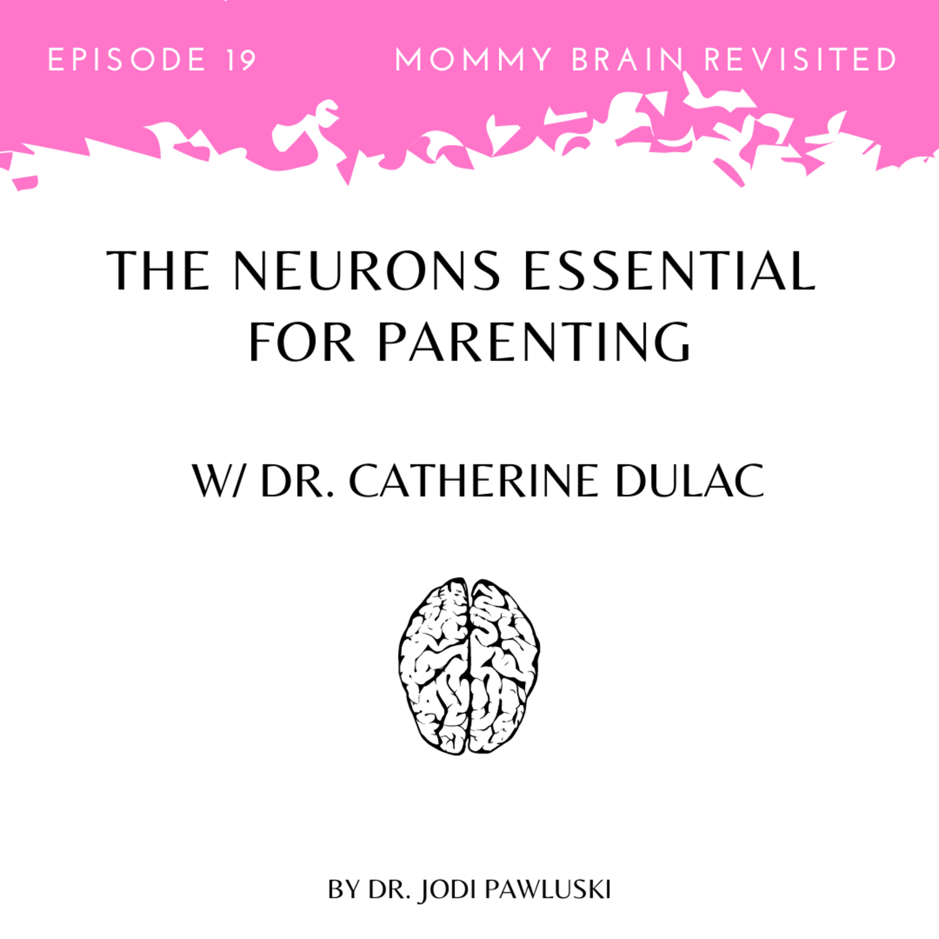 19. The Neurons Essential For Parenting