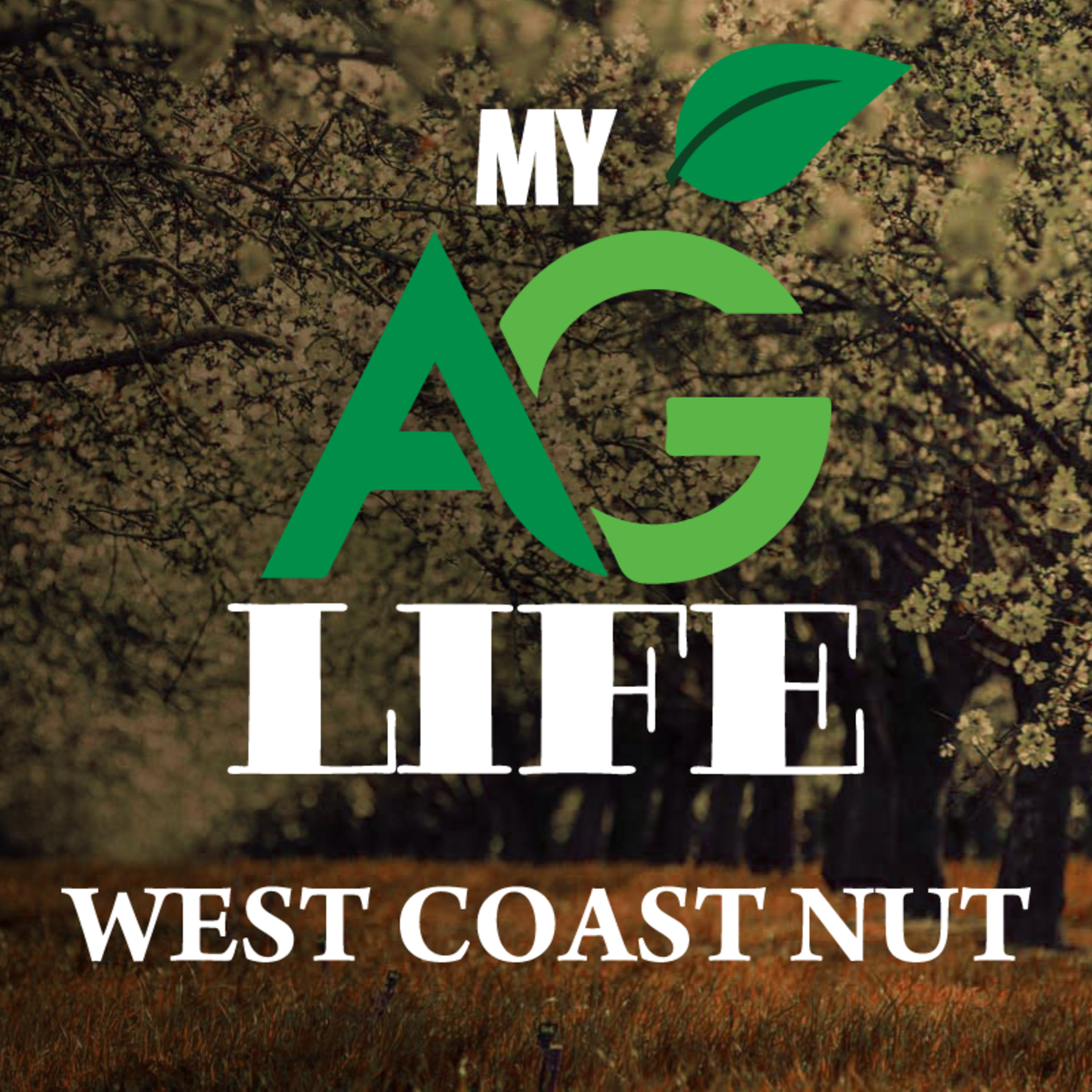 Growing with Mating Disruption: The New Standard for Navel Orangeworm IPM / West Coast Nut January 2021