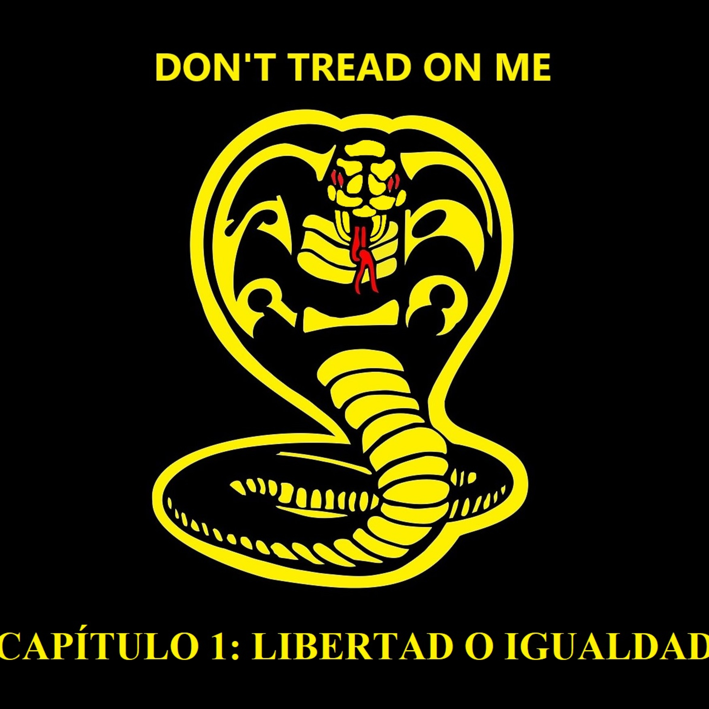 CAP1: LIBERTAD o IGUALDAD [Don't tread on me]