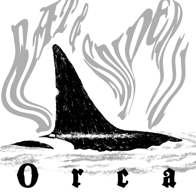 11 ORCA
