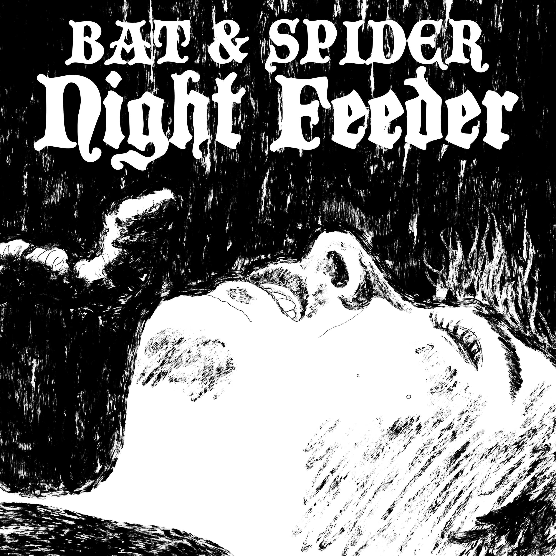 12 NIGHT FEEDER