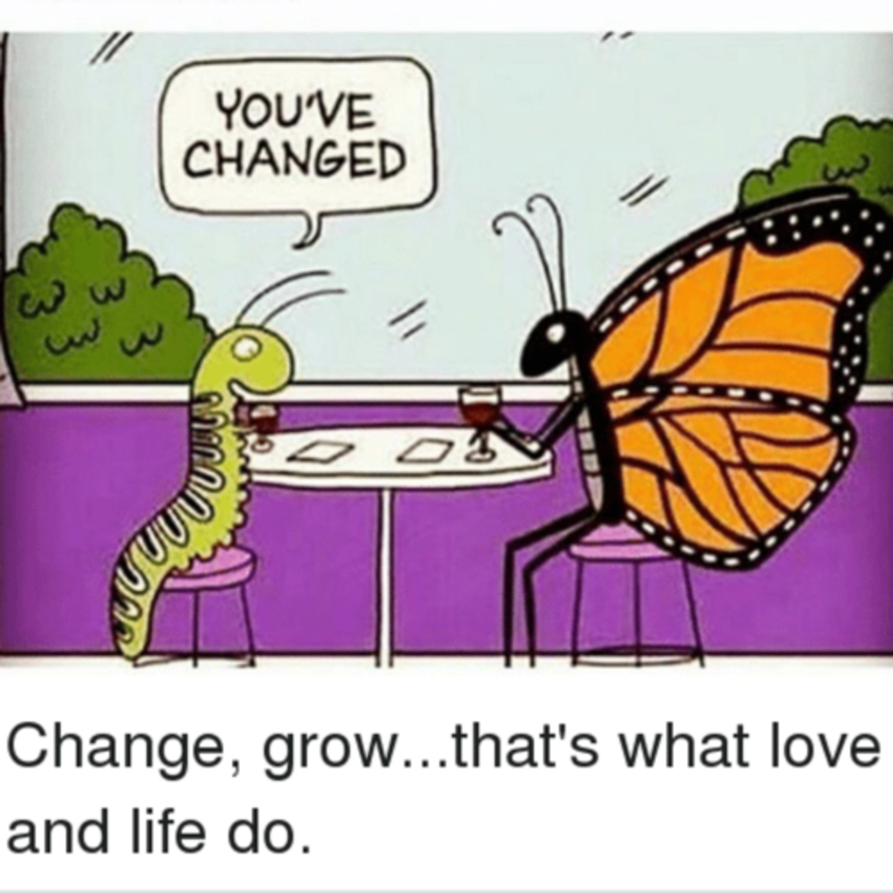 Let the caterpillar grow. 👌🏾 Butterfly Fly! 🦋