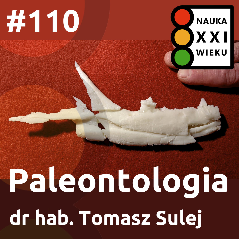 #110 - Paleontologia