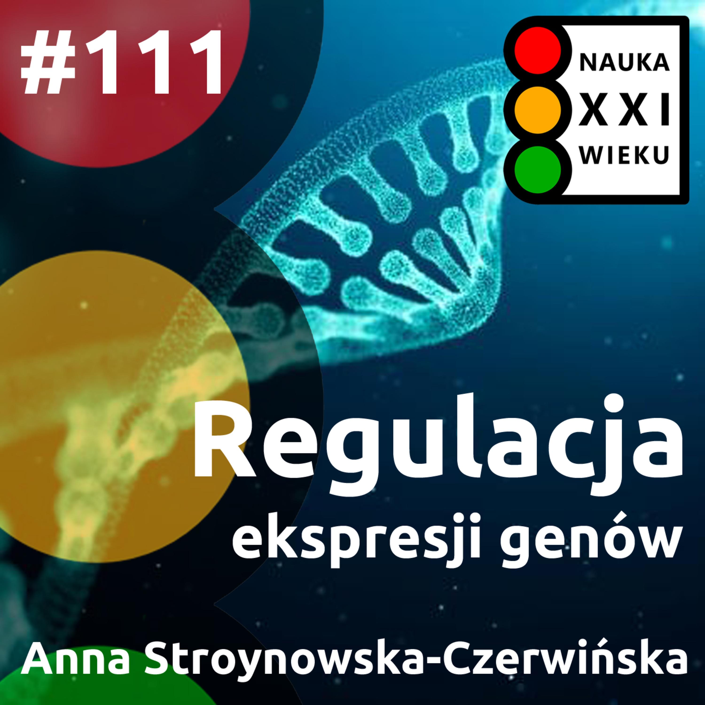 #111 - Regulacja ekspresji genów
