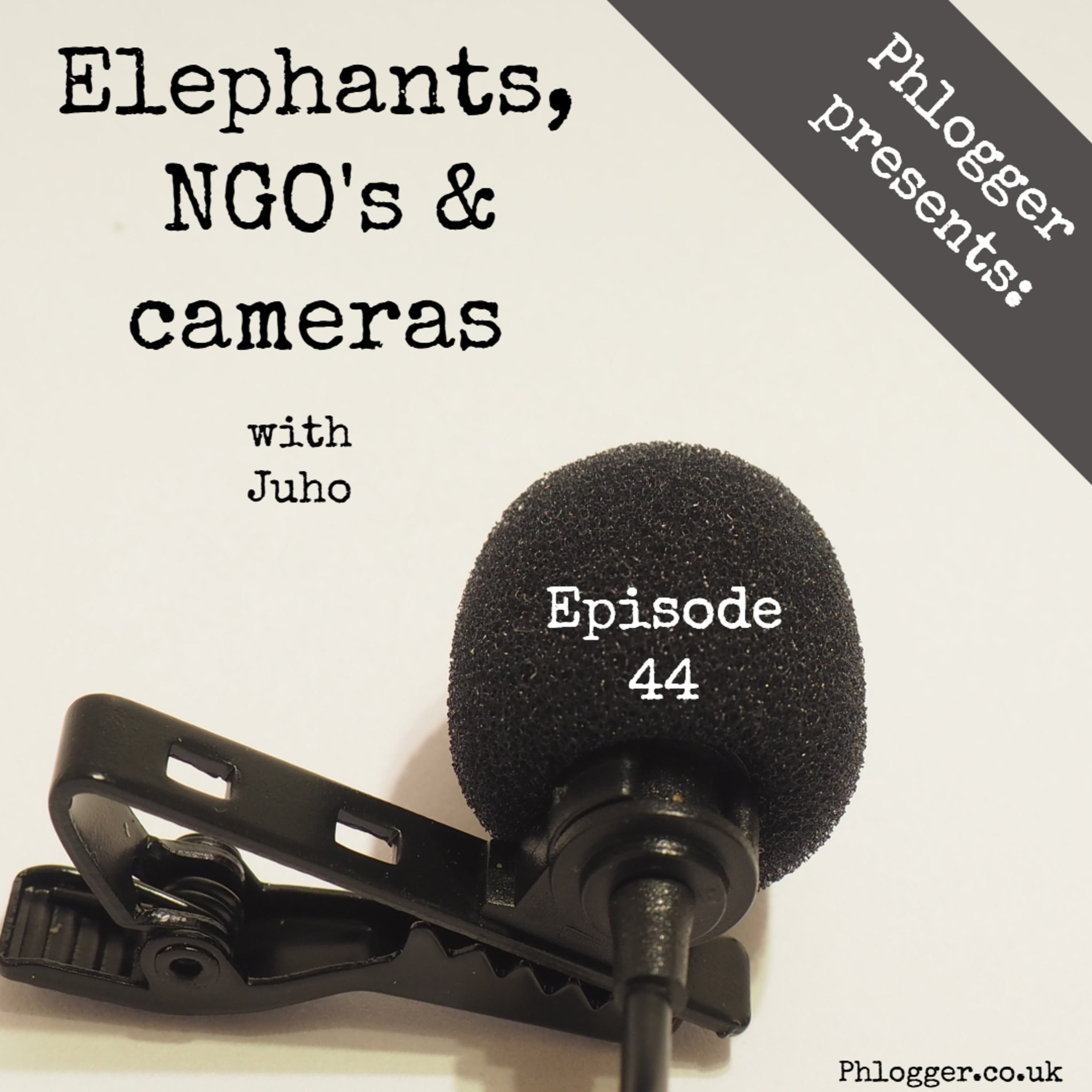 Elephants, NGO's & cameras (interview with Juho)