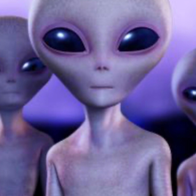 David Debunker (Area 51)