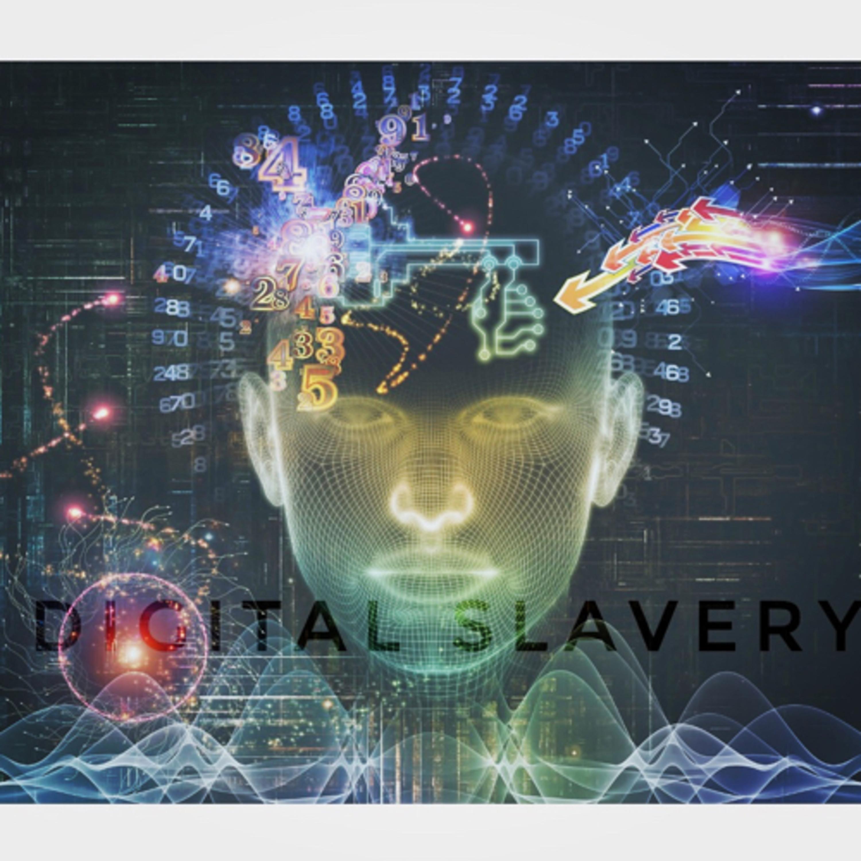 Digital Slavery - Anne Monaghan