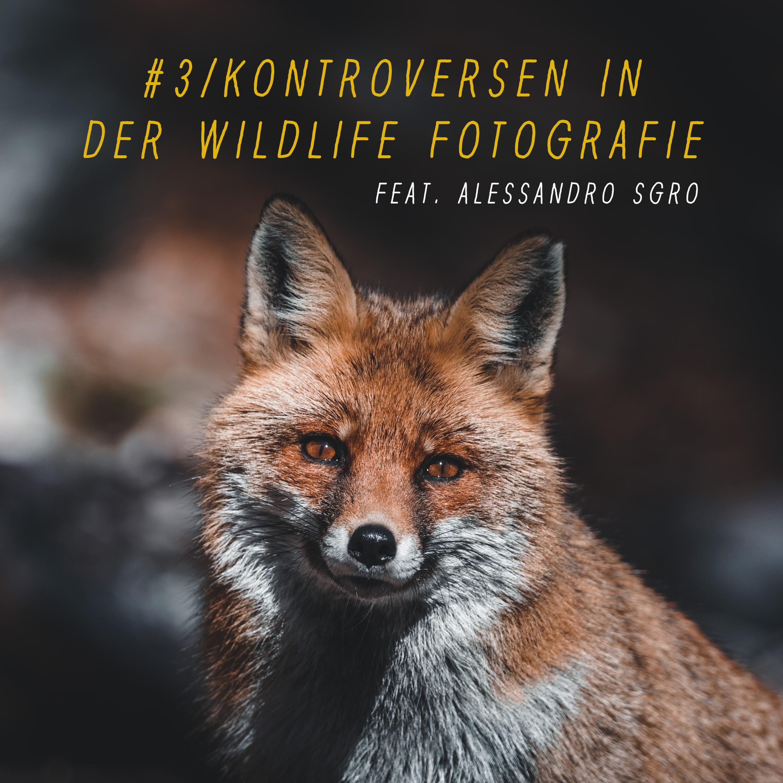 #3 | Kontroversen in der Wildlife Fotografie (feat. Alessandro Sgro)