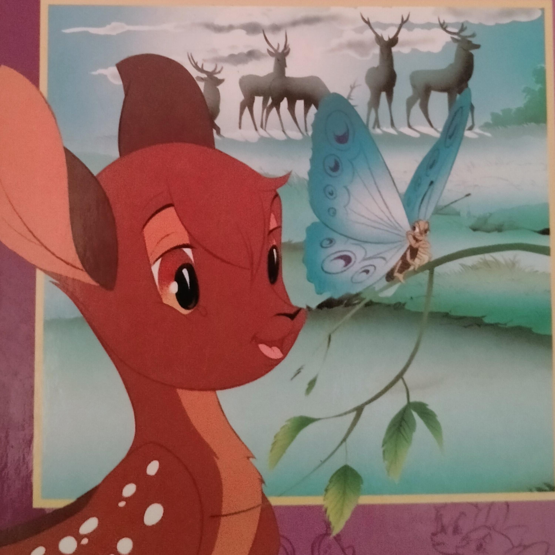 Collection : Histoire avant de dormir : Bambi
