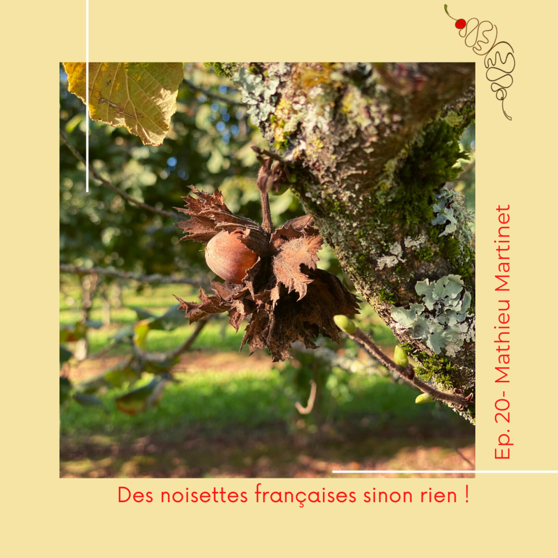 20. Mathieu Martinet : Des noisettes françaises sinon rien !