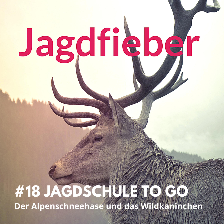 "#18 Jagdschule to go ""Alpenschneehase & Wildkaninchen"" #sachsenjägerin #wildbiologie #jagdschule #jagdfieberpodcast #jagdfieber #jagen #jungjäger"