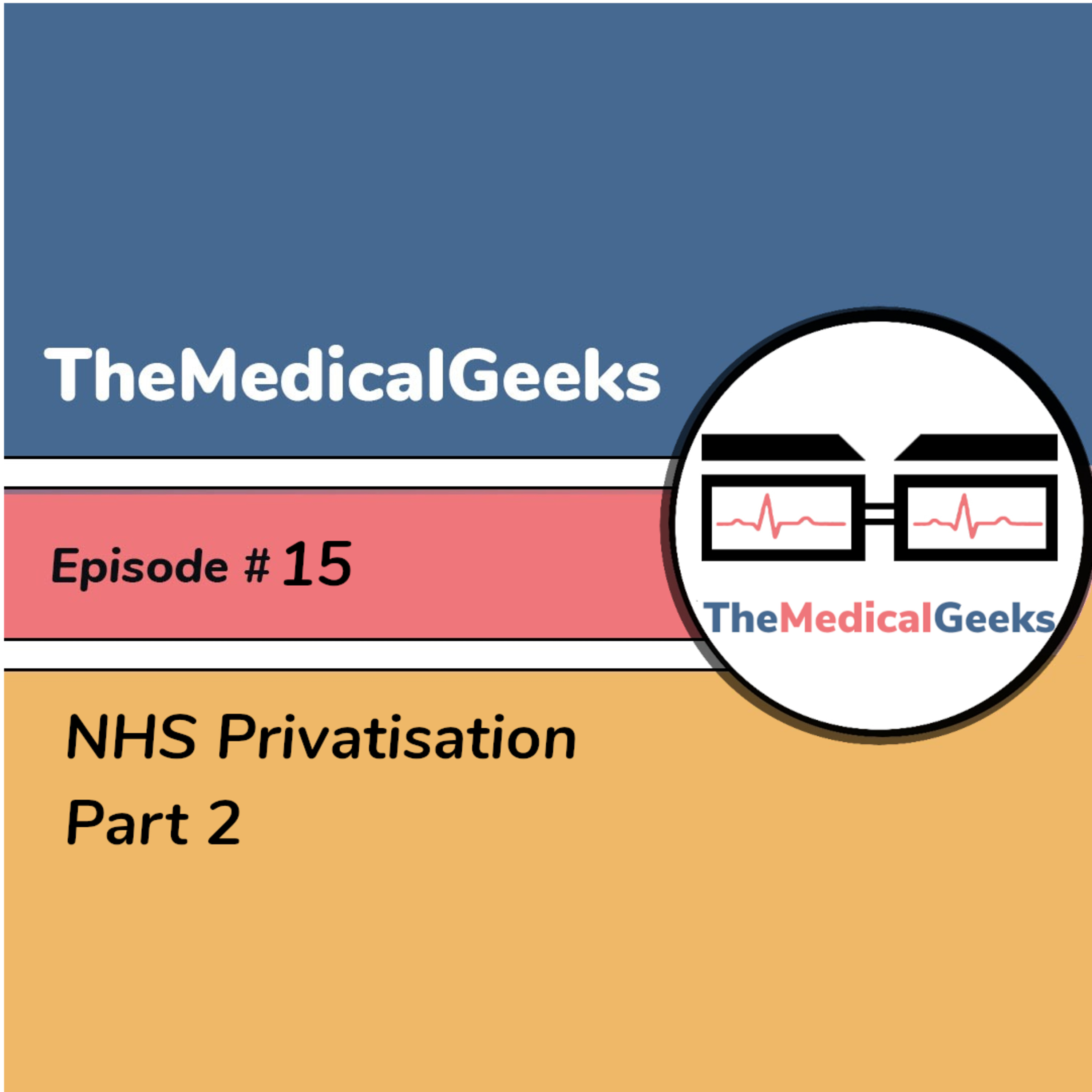 #15 Episode 15: NHS Privatisation Part 2