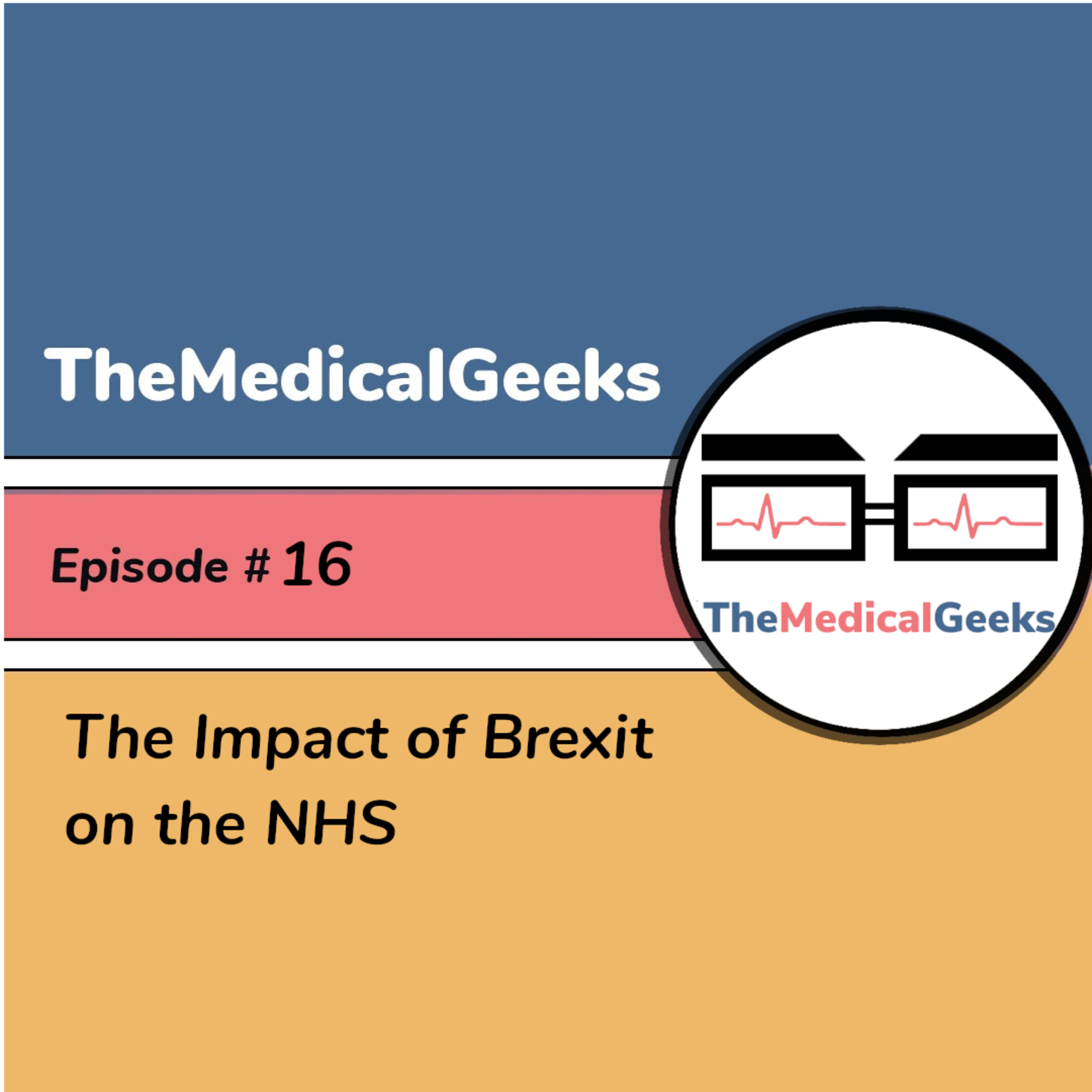 #16 Episode 16: The Impact of Brexit on the NHS